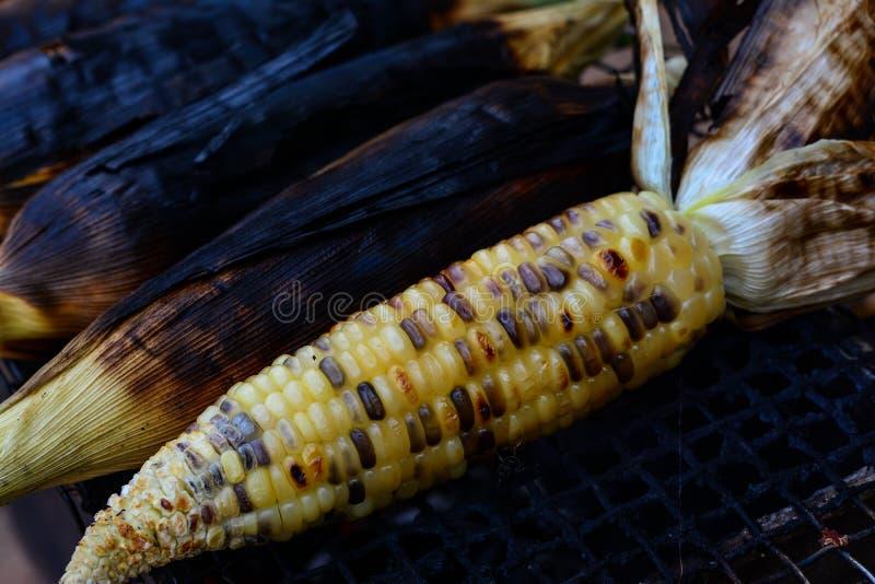 特写镜头烤玉米 免版税库存照片