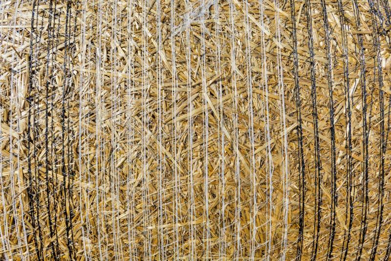 特写镜头背景堆在谷物以后收获的秸杆播种 库存图片