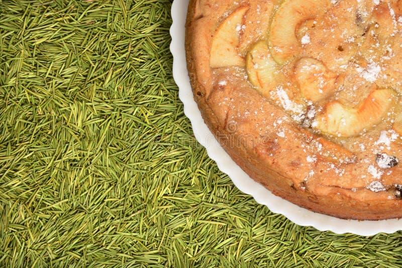 特写镜头苹果饼用在绿色杉树或云杉的针背景的葡萄干 库存图片