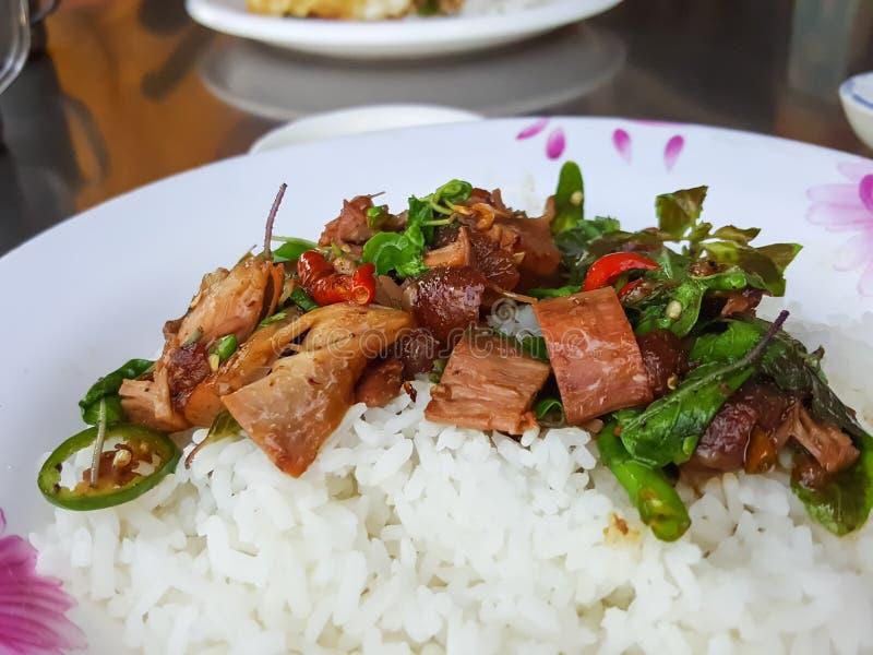 特写镜头,泰国食物样式:垫Kra Pao Kha Moo,辣 库存图片