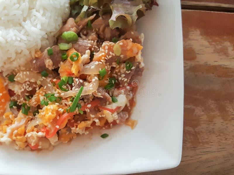 特写镜头,泰国食物样式:& x22; Kaow Moo大桶垫Thai& x22; fied猪肉,鸡蛋 图库摄影
