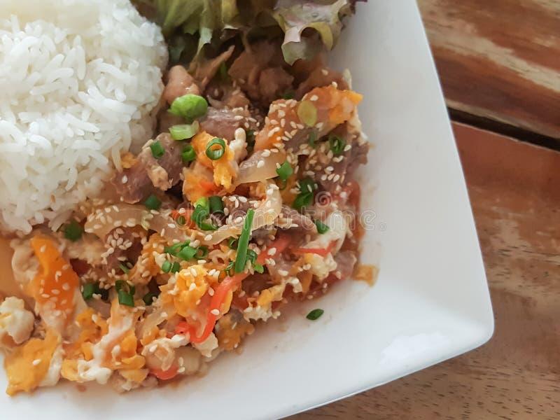 特写镜头,泰国食物样式:& x22; Kaow Moo大桶垫Thai& x22; fied猪肉,鸡蛋 库存图片