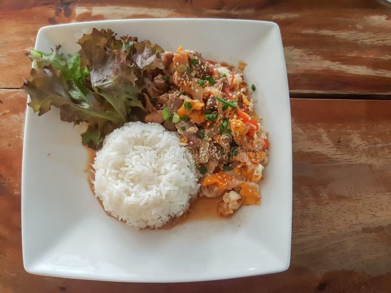 特写镜头,泰国食物样式:& x22; Kaow Moo大桶垫Thai& x22; fied猪肉 免版税库存照片