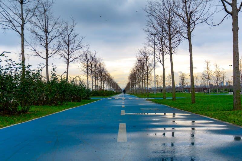 特别自行车道在公园的中心 库存图片