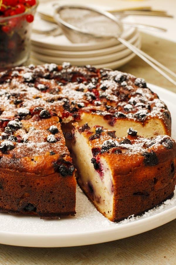 特别蛋糕用葡萄干和糖在白色盛肉盘 免版税库存照片