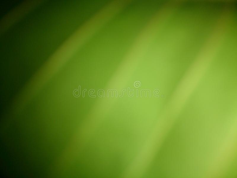 特别绿色 免版税库存图片