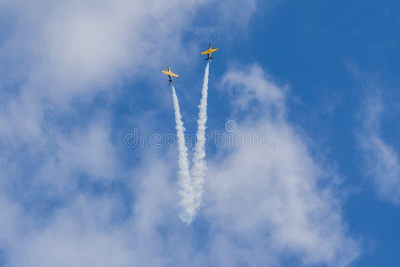特技动作飞行航空L-159美国皮革化学家协会鲁斯在空气的在航空体育比赛期间致力DOSAAF第80周年  免版税库存照片
