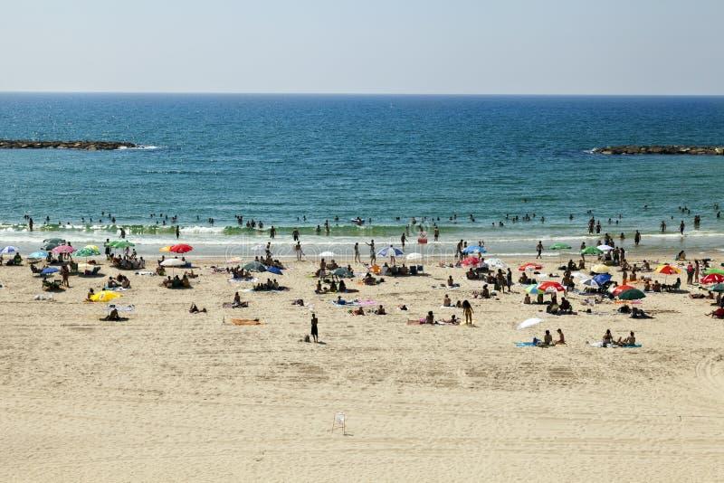 在海滩的夏天在特拉唯夫 免版税图库摄影