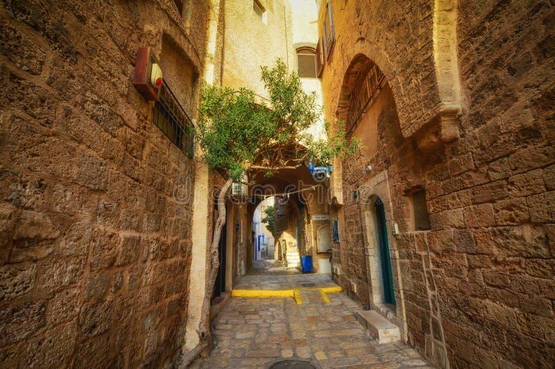 特拉维夫,以色列,在阿拉伯样式的古老石街道在老贾法角 免版税库存图片