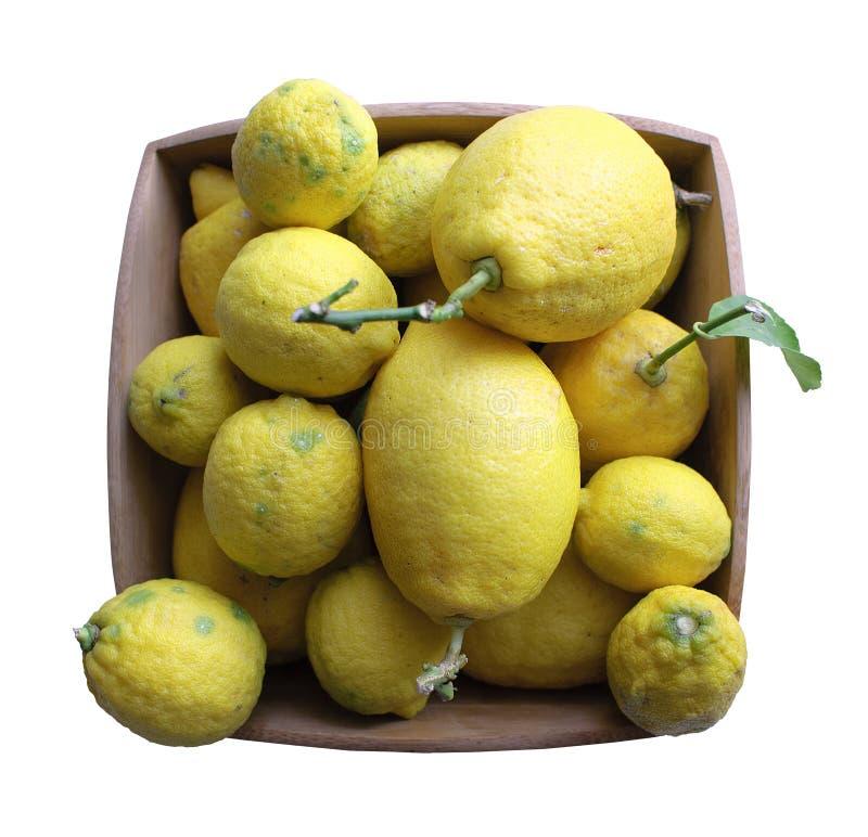 特点地中海意大利柠檬 免版税库存图片