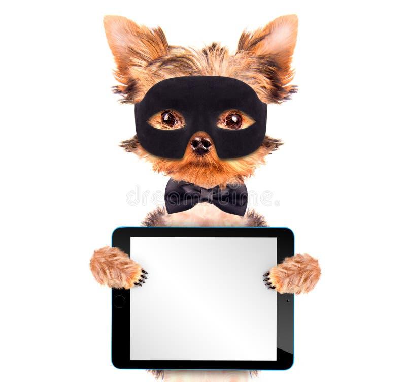 特级英雄与片剂个人计算机的小狗 向量例证