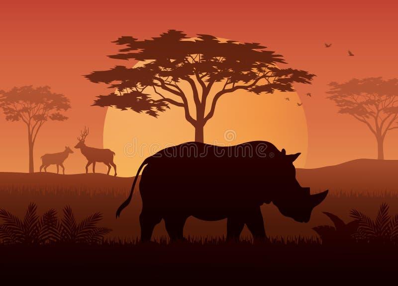 犀牛剪影日落在savanah的 向量例证