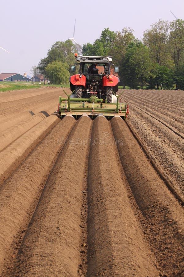 犁地产直线的农夫 库存照片