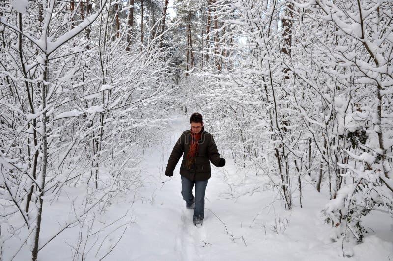 犁高级雪妇女 免版税库存照片