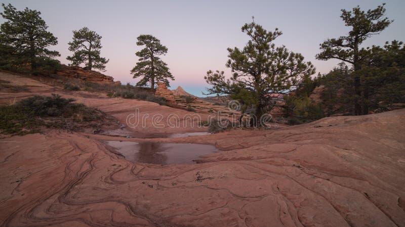 犹他在黎明前冬天光的` s slickrock 免版税库存照片