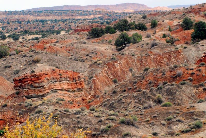 犹他,美国一个显著坚固性,五颜六色的沙漠风景 库存照片