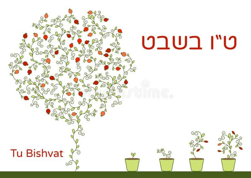 犹太假日的传染媒介例证 一棵树用石榴结果实,分支、漩涡贺卡的或海报 文本Tu Bishv 向量例证
