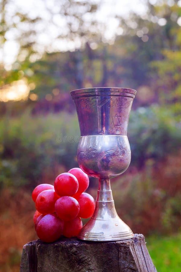 犹太假日葡萄酒玻璃  库存照片
