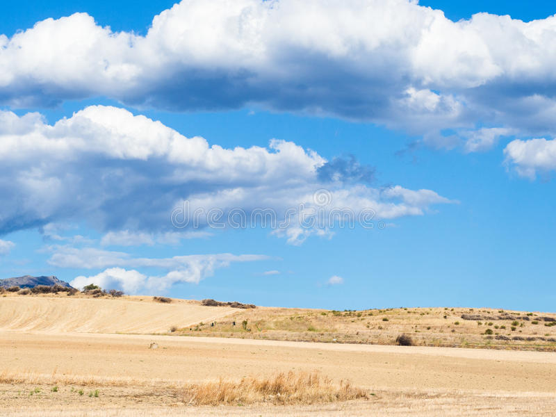 狂放撒丁岛的国家 库存图片