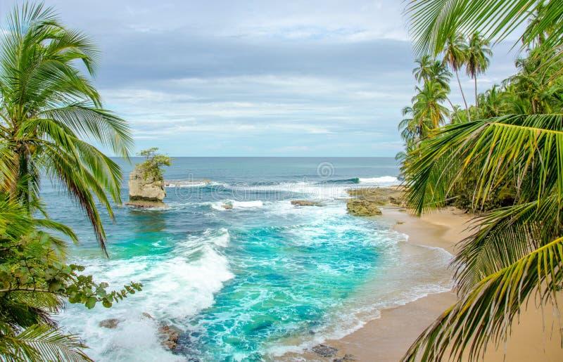狂放的加勒比海滩哥斯达黎加-曼萨尼约角 免版税图库摄影