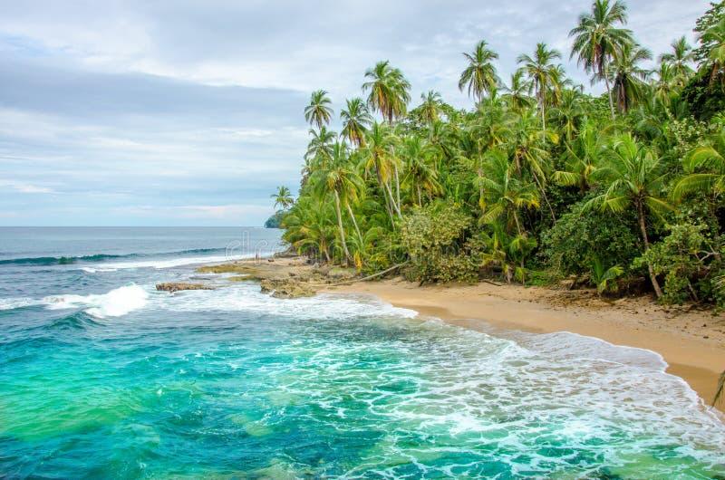 狂放的加勒比海滩哥斯达黎加-曼萨尼约角 免版税库存照片