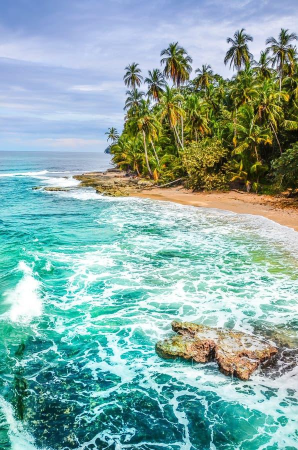 狂放的加勒比海滩哥斯达黎加-曼萨尼约角 免版税库存图片