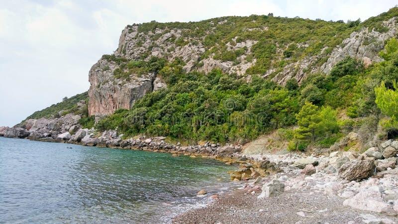 狂放的多岩石的海滩 图库摄影