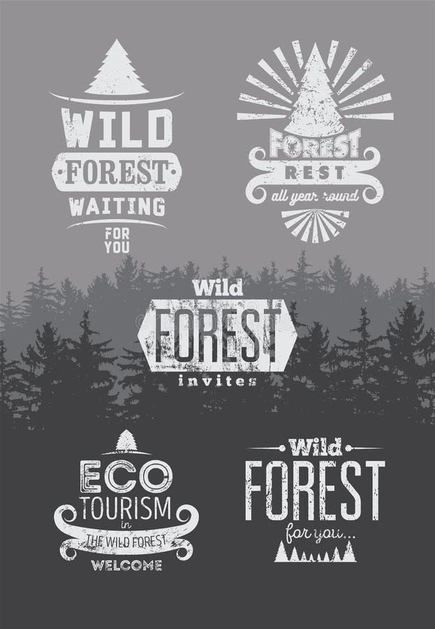 狂放的森林和生态旅游印刷减速火箭的标签、葡萄酒徽章和商标标志在背景与冷杉木环境美化 Gr 皇族释放例证