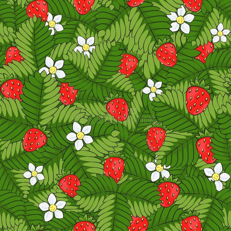 狂放的森林草莓的领域 无缝的模式 拉长的现有量 向量例证