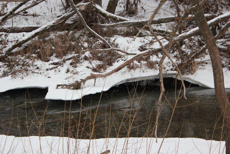 狂放的河在冬天 图库摄影