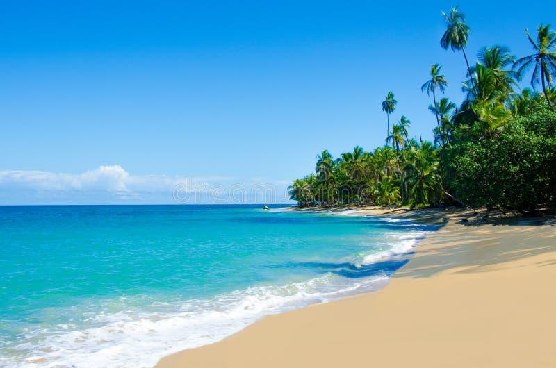 狂放的海滩奇基塔和Cocles在哥斯达黎加 免版税库存图片