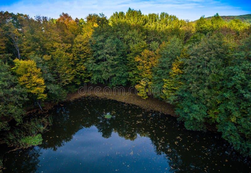 狂放的湖在小山附近的秋天森林里 免版税库存图片