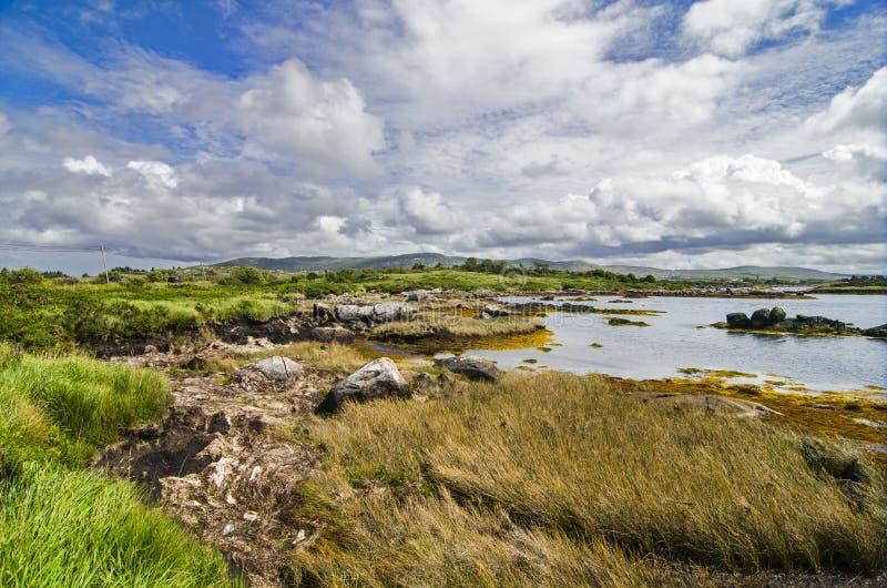 狂放的湖风景在Connemara 免版税图库摄影