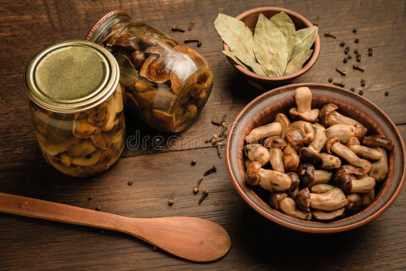 狂放的蘑菇和调味料腌制的 库存图片