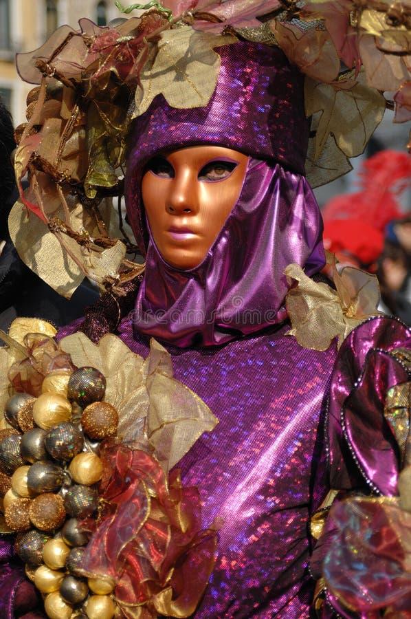 狂欢节威尼斯23 免版税图库摄影