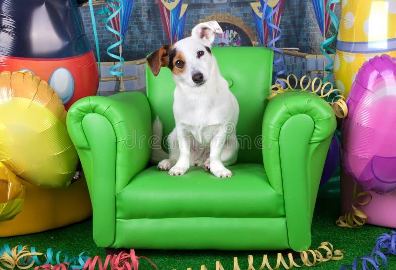 狂欢节照片与一台起重器罗素的在一把绿色扶手椅子 库存照片