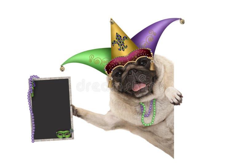 狂欢节狂欢节与丑角供人潮笑者帽子、威尼斯式面具和装饰的黑板标志的哈巴狗狗 库存照片