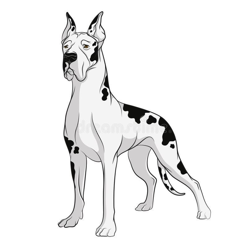 狗传染媒介图画  在一个空白背景的对象 库存例证