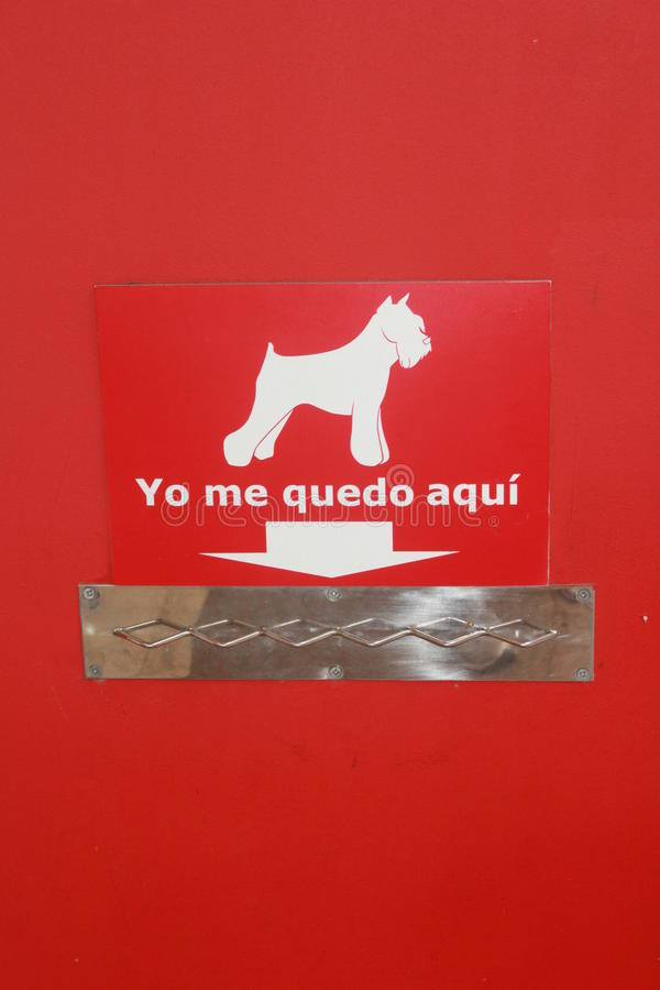 狗停放的西班牙语 库存照片