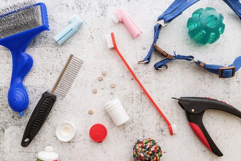 狗关心的工具:刷子、药片、在白色背景顶视图和玩具驱散的指甲夹、皮带 库存图片