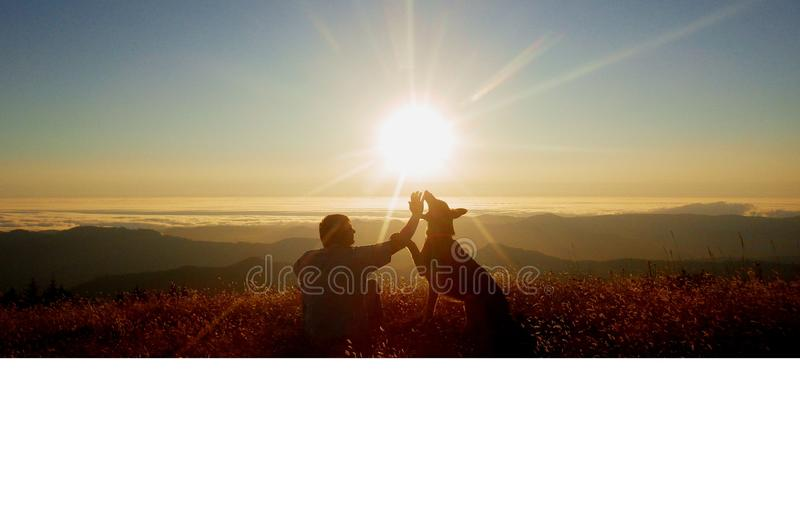 狗和人日落的 免版税库存照片