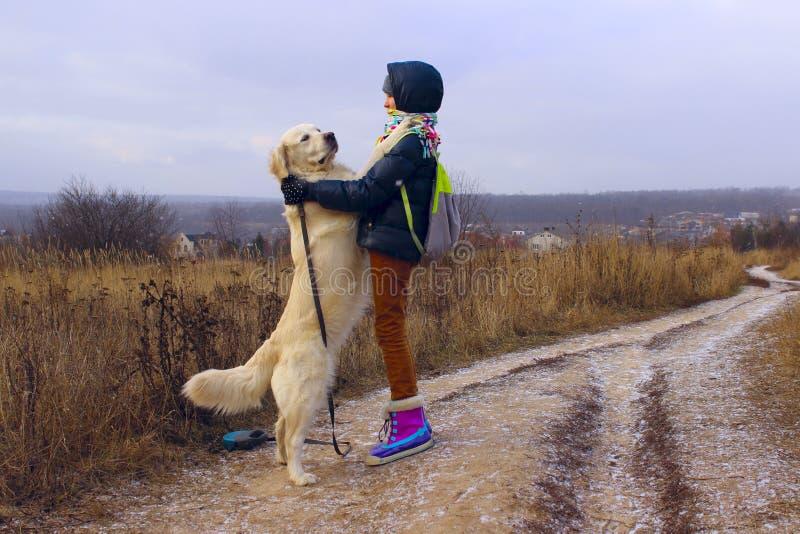 狗和所有者,室外 金毛猎犬使用室外 免版税库存图片