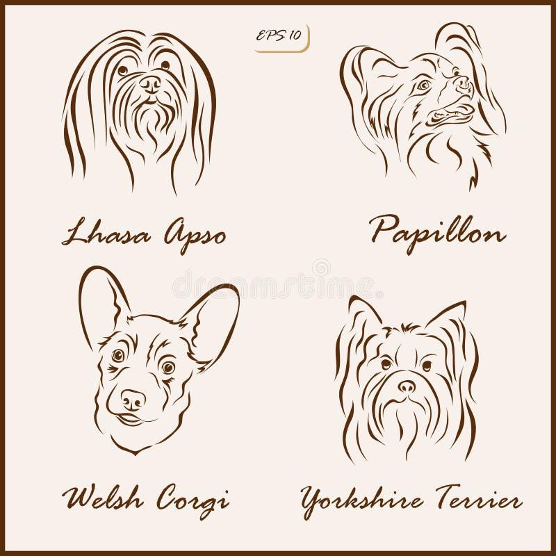 狗品种 向量例证