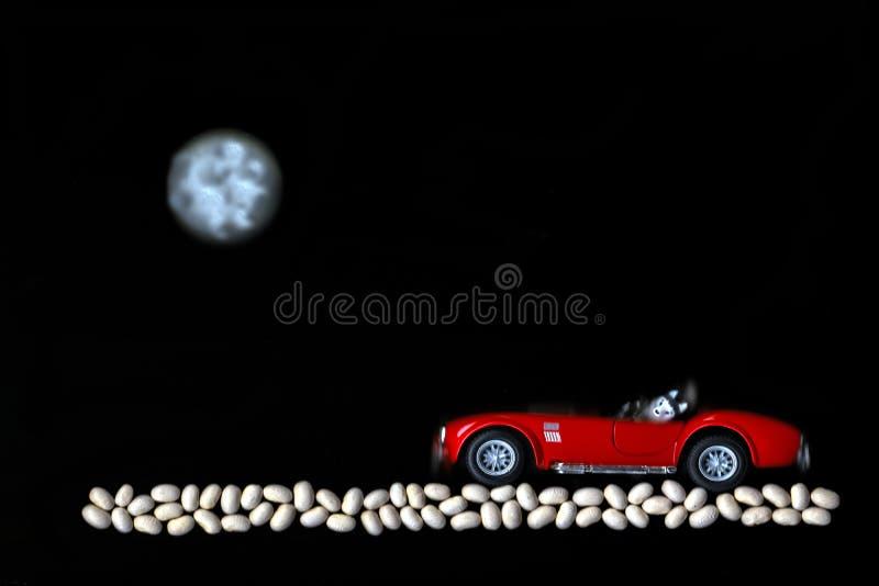 狗在有月亮的红色汽车乘坐在石渣 库存图片