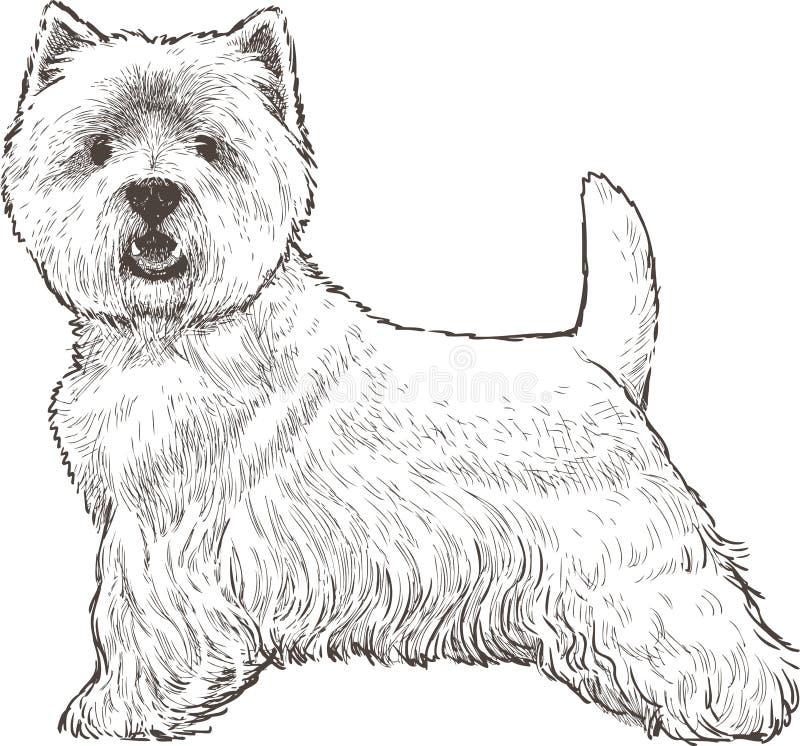 狗奔跑 向量例证