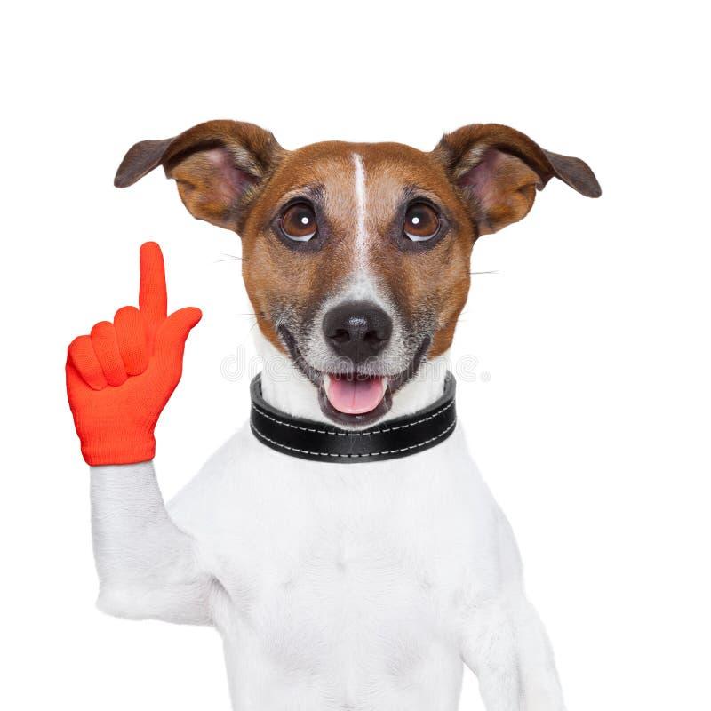狗想法 库存照片