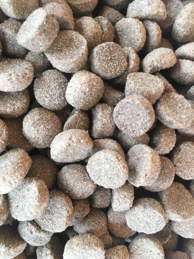 狗抽象背景的食物 免版税库存照片