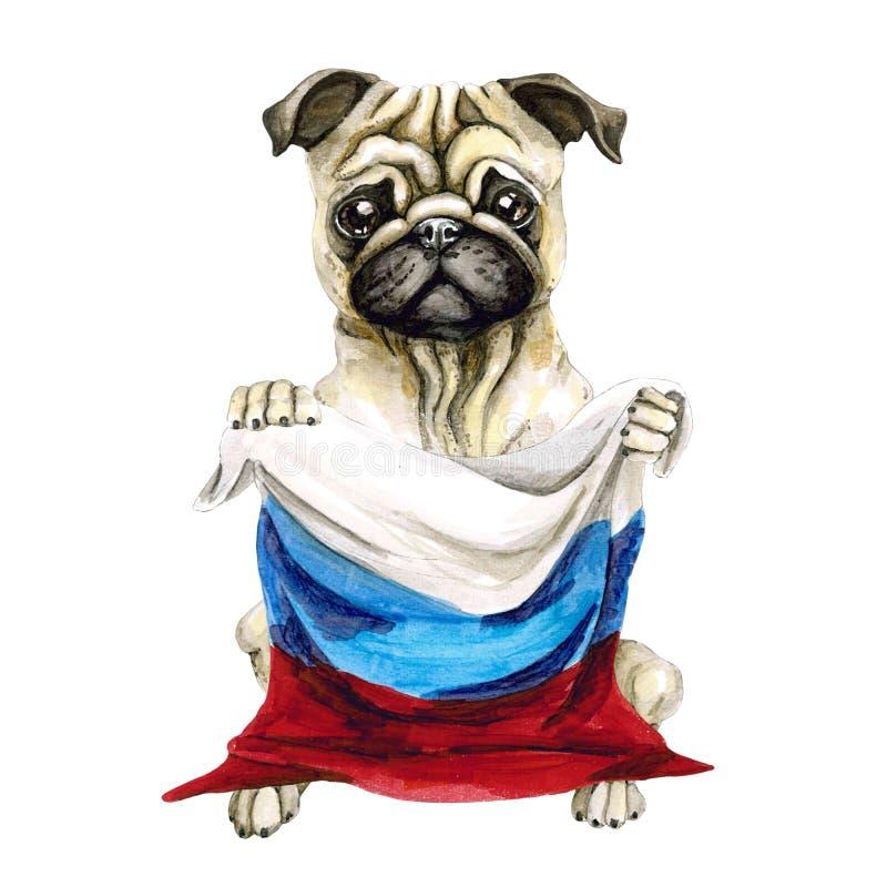狗拿着俄国旗子的品种哈巴狗 背景查出的白色 政治 小狗 库存例证