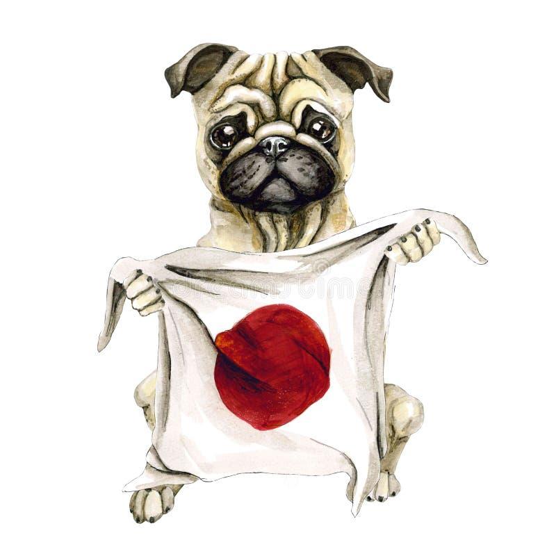 狗拿着日本旗子的品种哈巴狗 背景查出的白色 政治 皇族释放例证