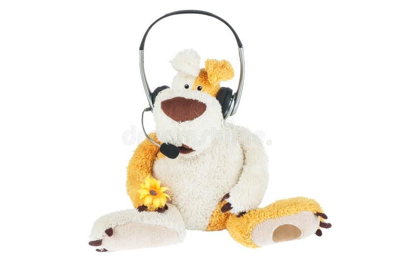 狗操作员电话中心的概念性图象 库存照片